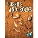 Fossils and Rocks