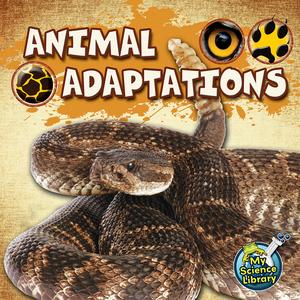 TCR419355 Animal Adaptations                                           Image