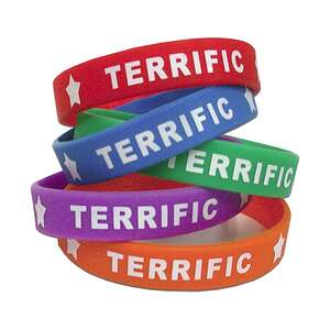 TCR6549 Terrific Wristbands Image