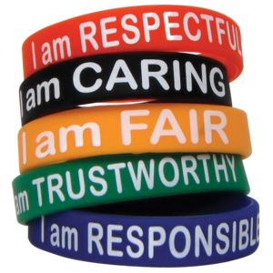 TCR6569 Character Traits Wristbands Image