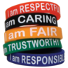 TCR6569 Character Traits Wristbands