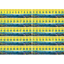 0-100 Number Line Headliners from Wyland