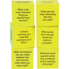 Foam Nonfiction Comprehension Cubes