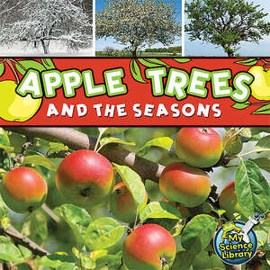 TCR419249 Apple Trees and the Seasons Image