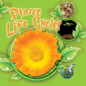 TCR419362 Plant Life Cycles Image