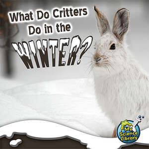 TCR419485 What Do Critters Do in the Winter?                           Image