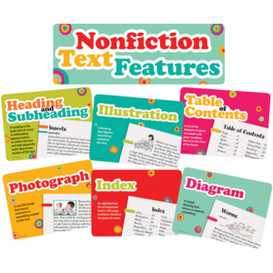 TCR62381 Nonfiction Text Features Bulletin Board Display Set Image