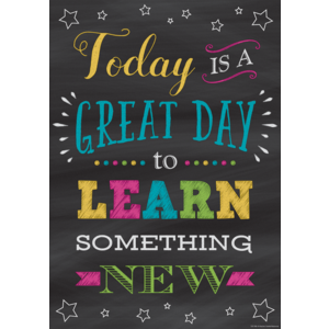 TCR7406 Today Is a Great Day to Learn Something New Positive Poster Image