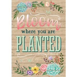 TCR7428 Bloom Where You Are Planted Positive Poster Image