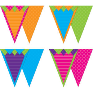 TCR74776 Sassy Solids Pennants Image