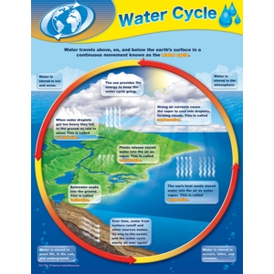 TCR7743 Water Cycle Chart Image