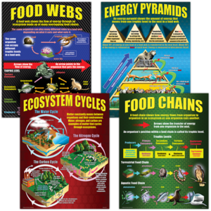 TCRP059 Ecosystems Poster Set Image