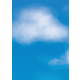 Clouds Better Than Paper Bulletin Board Roll Alternate Image A