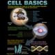 Cells Poster Set Alternate Image A