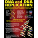 DNA & Heredity Poster Set Alternate Image B