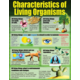 Living Organisms Poster Set Alternate Image C