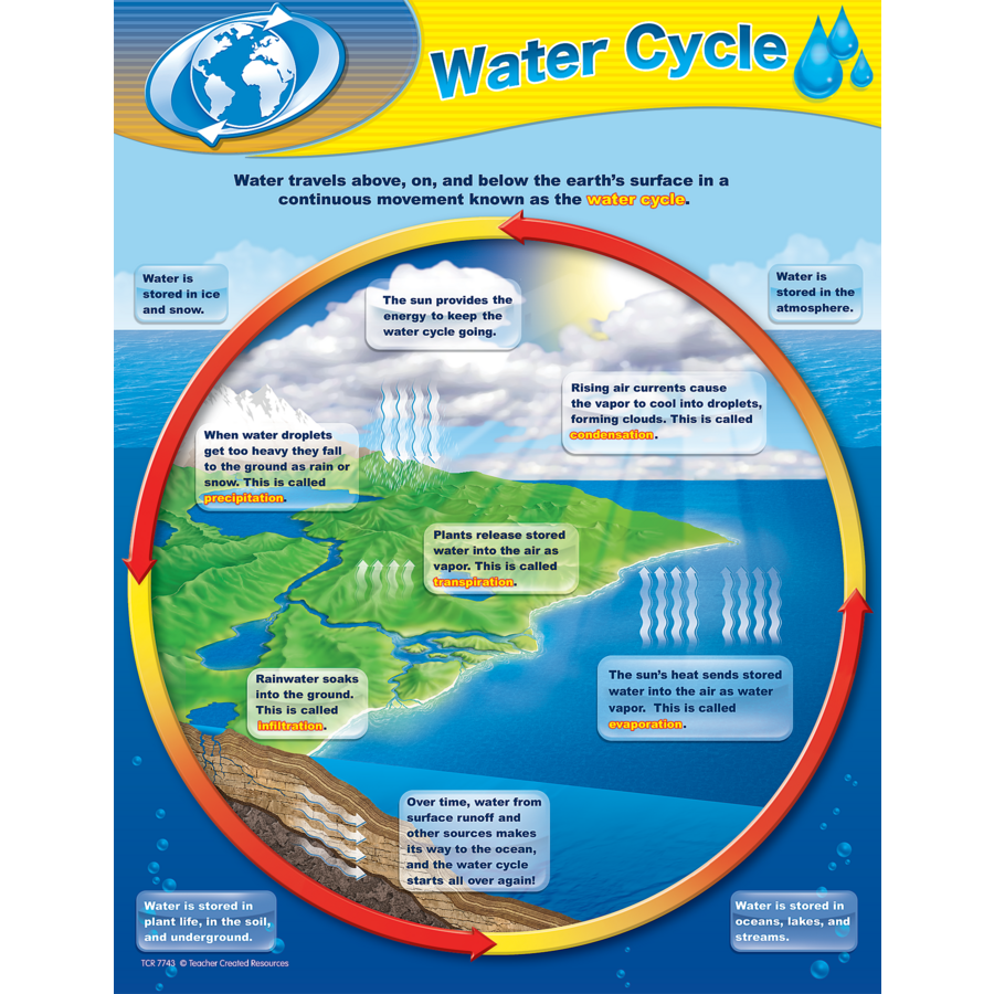 Water cycle chart tcr7743 teacher created resources tcr7743 water cycle chart image ccuart Choice Image