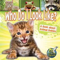 Who Do I Look Like? 6-pack