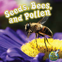 Seeds, Bees and Pollen 6-pack
