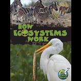 How Ecosystems Work