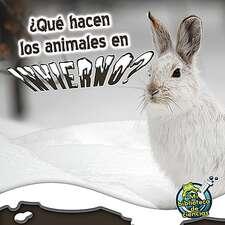Que hacen los animales en invierno?