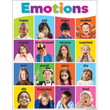 Colorful Emotions Chart
