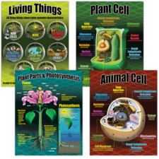 Life Science Poster Set