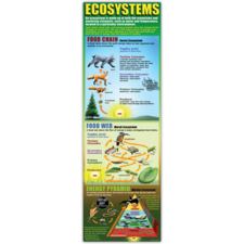 Ecosystems Colossal Poster