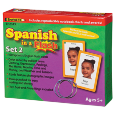 Spanish in a Flash Cards Set 2