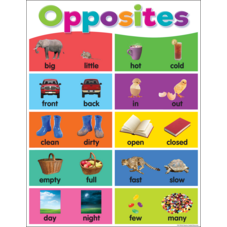 Colorful Opposites Chart