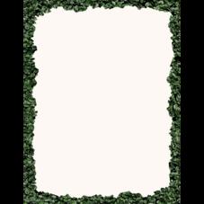 Modern Farmhouse Boxwood Computer Paper
