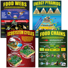 Ecosystems Poster Set