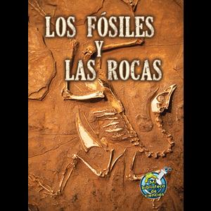 TCR173117 Los fosiles y las rocas Image
