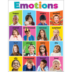 TCR7107 Colorful Emotions Chart Image