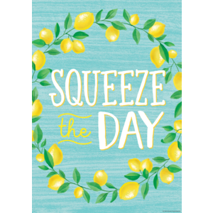TCR7955 Squeeze the Day Positive Poster Image
