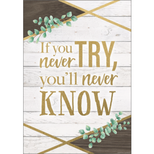 TCR7979 If You Never Try, You'll Never Know Positive Poster Image