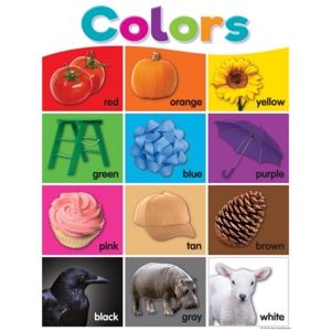 TCR7991 Colorful Colors Chart Image