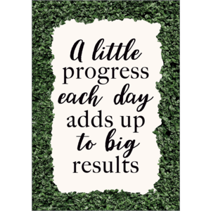 TCR7994 A Little Progress Each Day Adds Up to Big Results Positive Poster Image