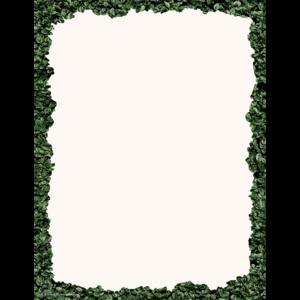 TCR8520 Modern Farmhouse Boxwood Computer Paper Image