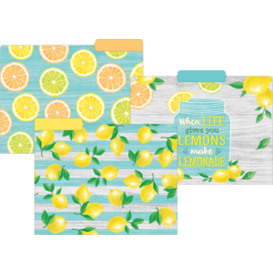 TCR8542 Lemon Zest File Folders Image