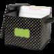 Chalkboard Brights Storage Box Alternate Image A