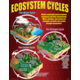 Ecosystems Poster Set Alternate Image D