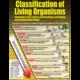 Living Organisms Poster Set Alternate Image D