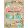 TCR7428 Bloom Where You Are Planted Positive Poster