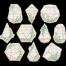 Eucalyptus Geometric Terrariums Accents