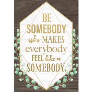 TCR7978 Be Somebody Who Makes Everybody Feel like a Somebody Positive Poster Image