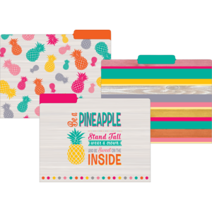 TCR8538 Tropical Punch File Folders Image