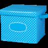 TCR20817 Aqua Polka Dots Storage Box
